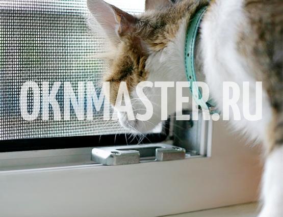 Москитные сетки для котов